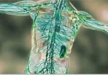 11 способов почистить лимфу